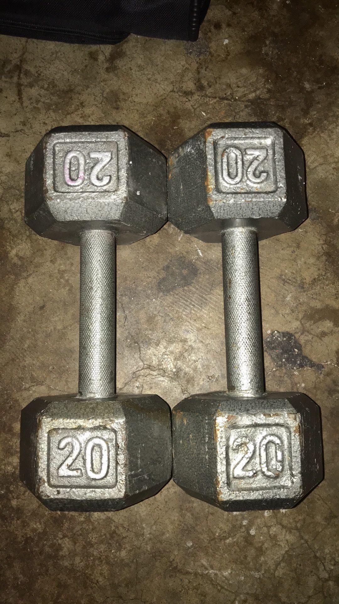 20 Pound Steel Dumbbells