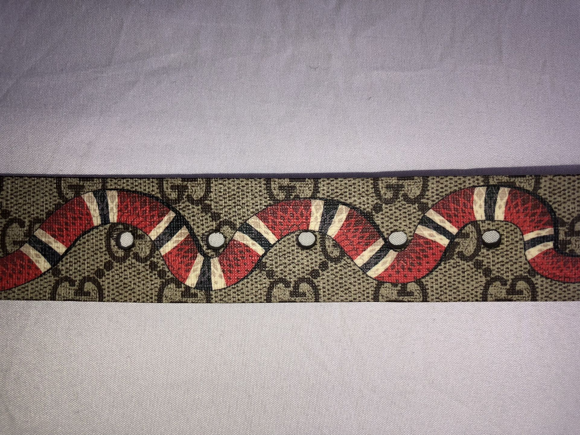 GUCCI Supreme belt with Kingsnake print