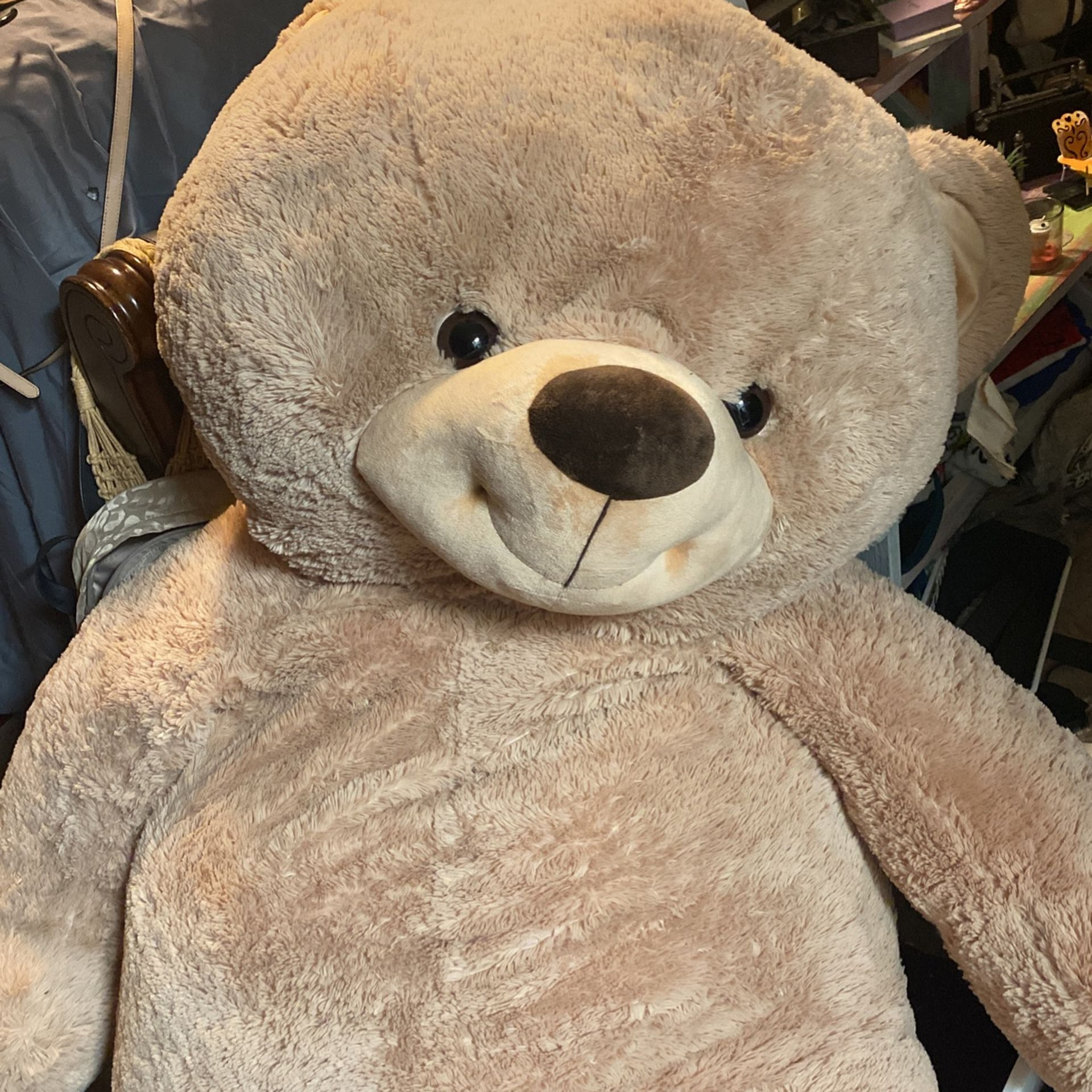 Giant Teddy Bear!!!! New!  Paid Over 200! 75 Is What I'm Asking But I Will Take Reasonable Offers