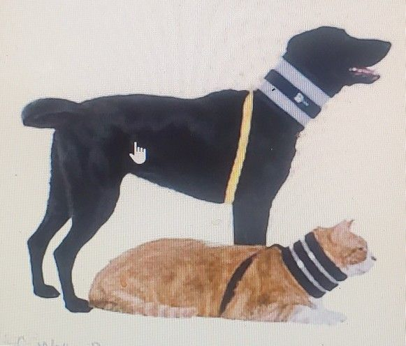 VET ONE Bite Free Collar