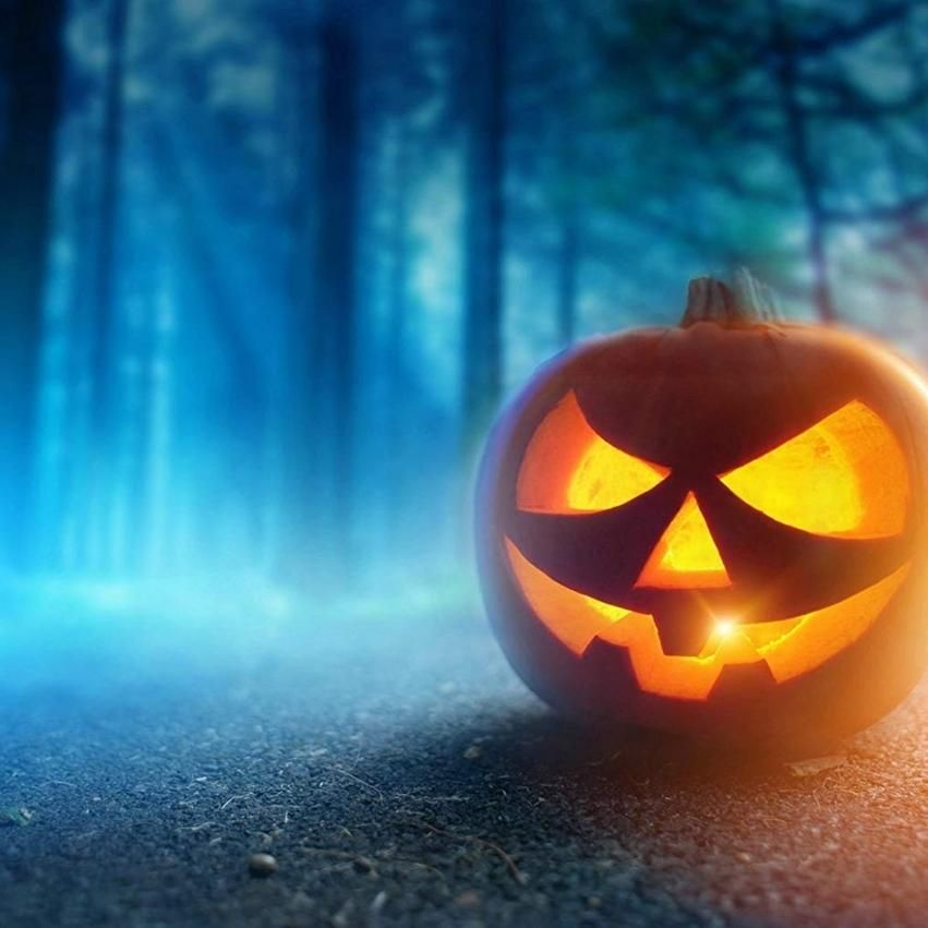 7x5ft Scared Halloween Photo Backdrops Haunted Pumpkin Pitch Dark Forest Photo Booth Props