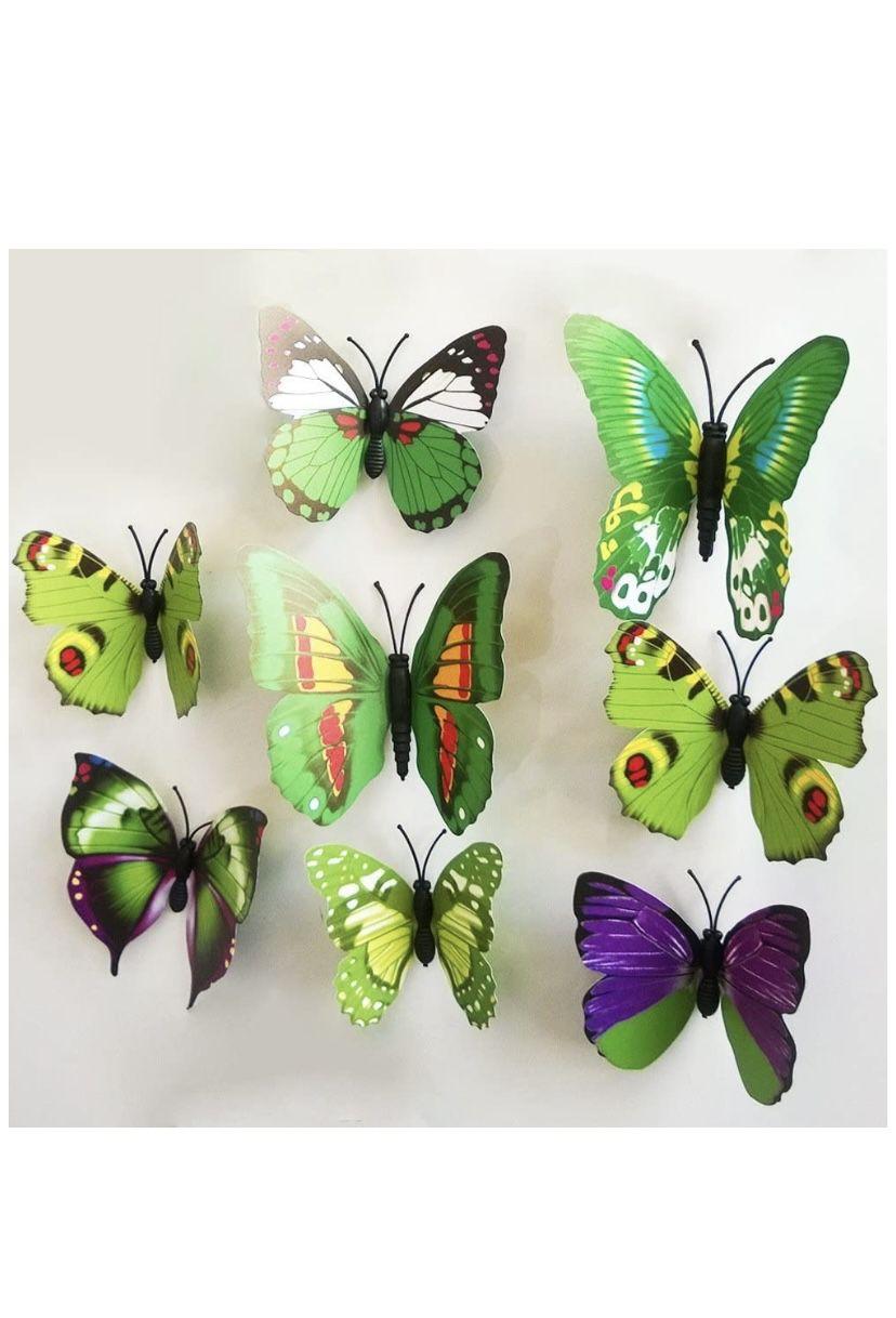 Butterflies 🦋