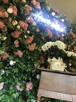 flower wall Thumbnail