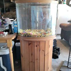 40 Gallon Fish Tank Thumbnail