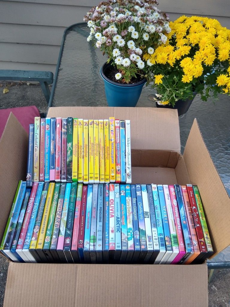 Big Box Of Awesome Children's Dvds