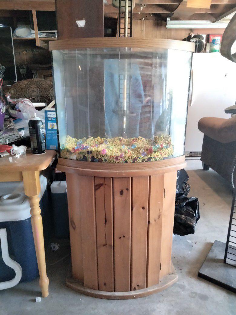 40 Gallon Fish Tank