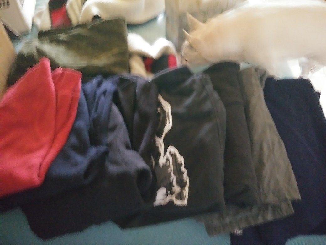 Sweaters med and large