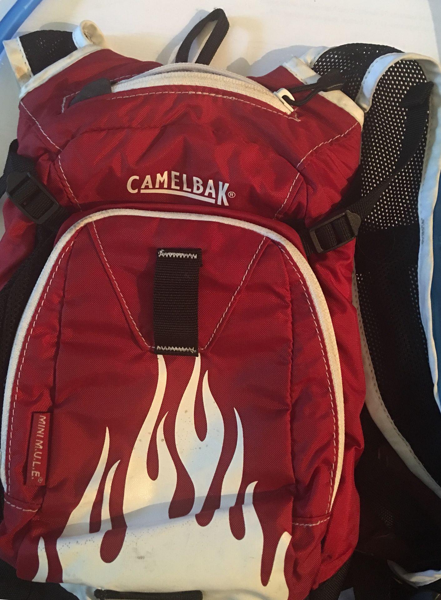 Camelbak Kids Mini M.U.L.E. Hydration Pack
