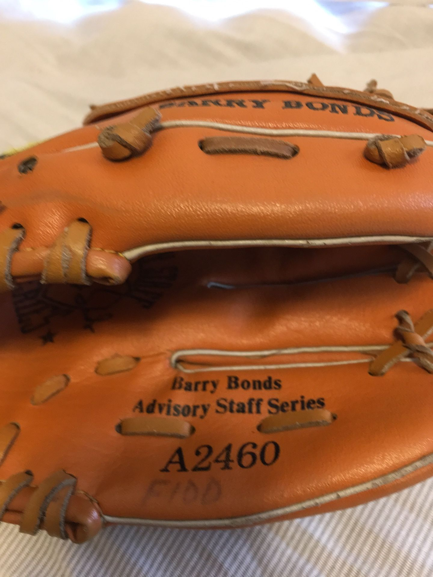 Wilson youth baseball glove