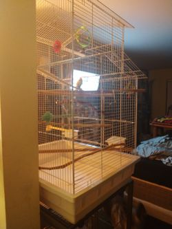 Huge Bird Cage About 3 Feet Tall Thumbnail