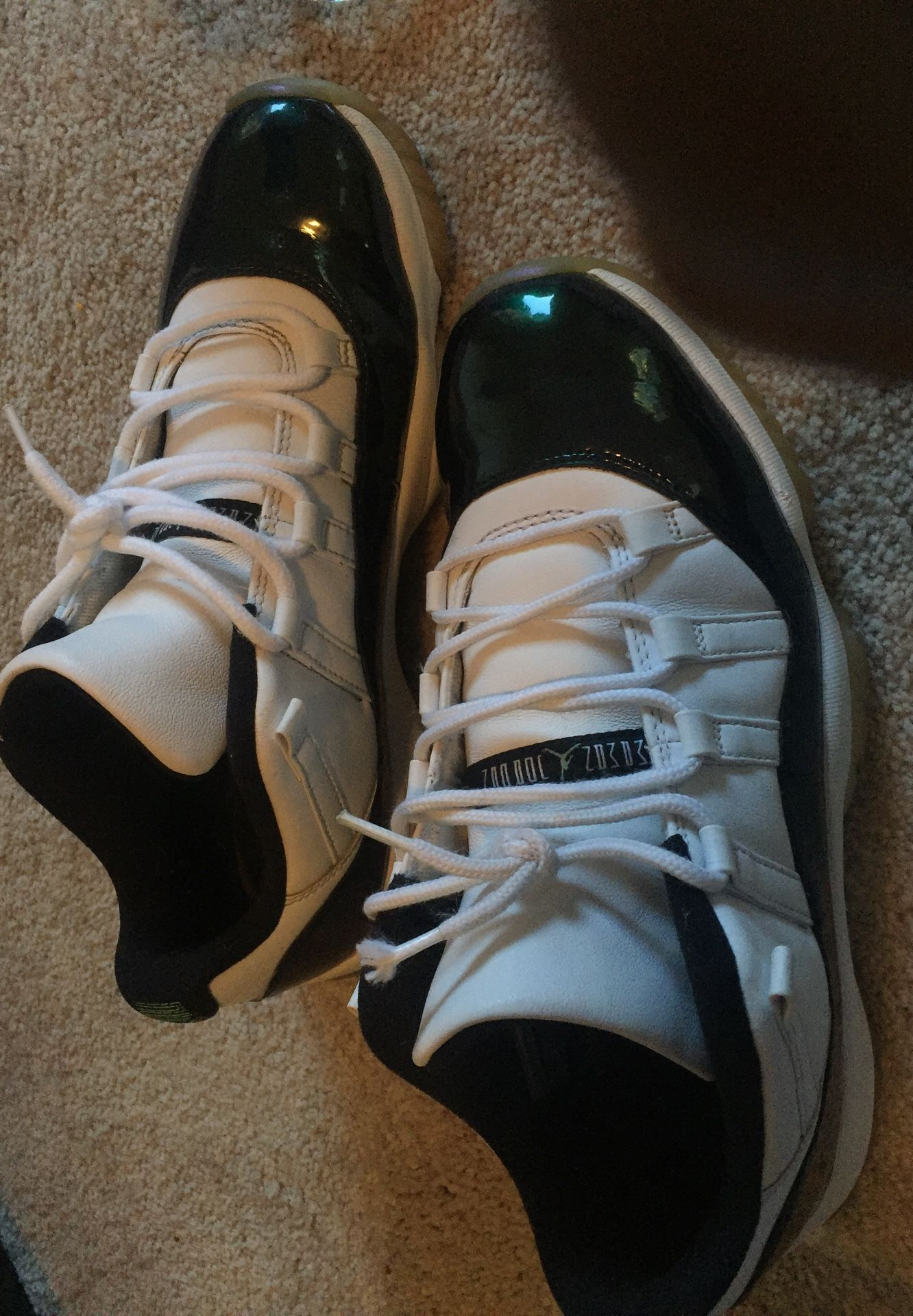 Jordan retro 11s emeralds