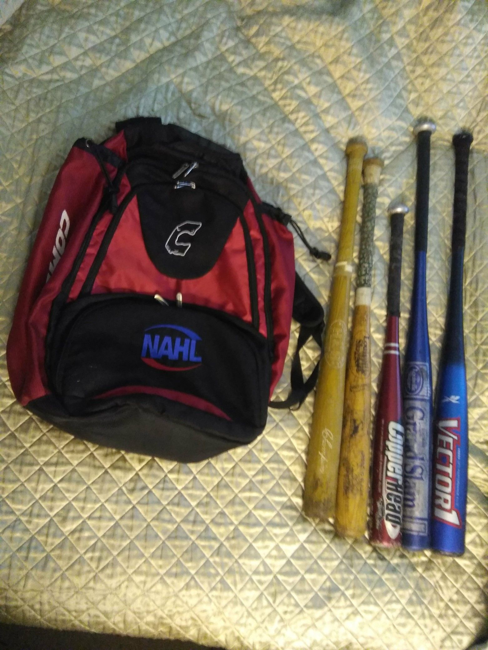 BASEBALL SOFTBALL BACKPACK BAG AND BATS. READ DETAILS
