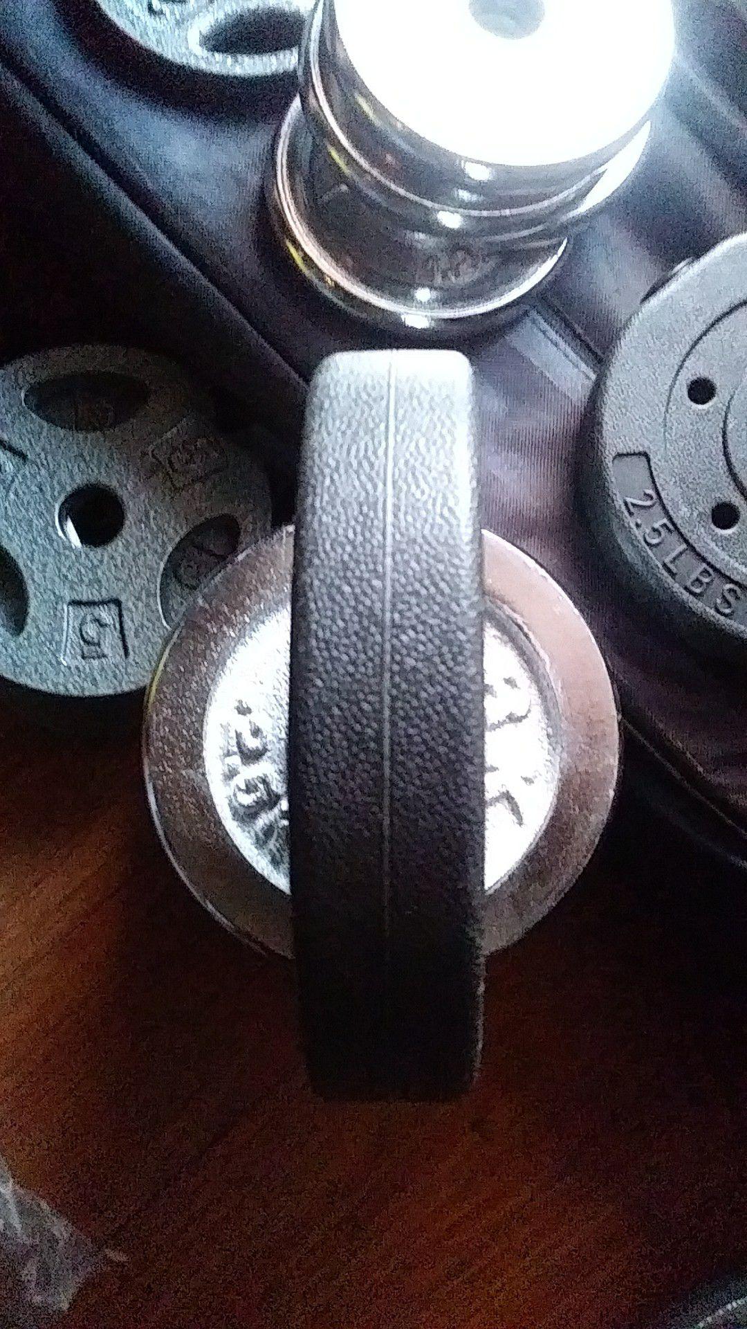 2.5 lbs. Weights Standard Plates