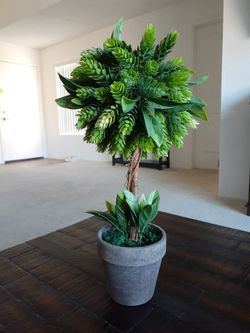 Fake Plant Thumbnail