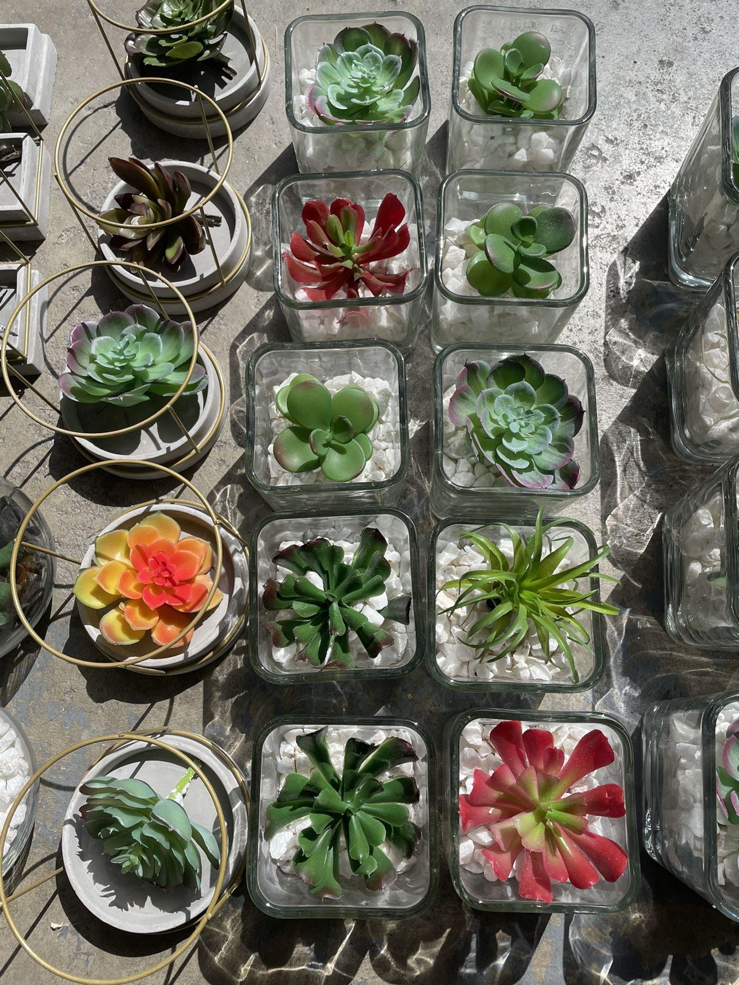 Faux Succulent Centerpieces/decor