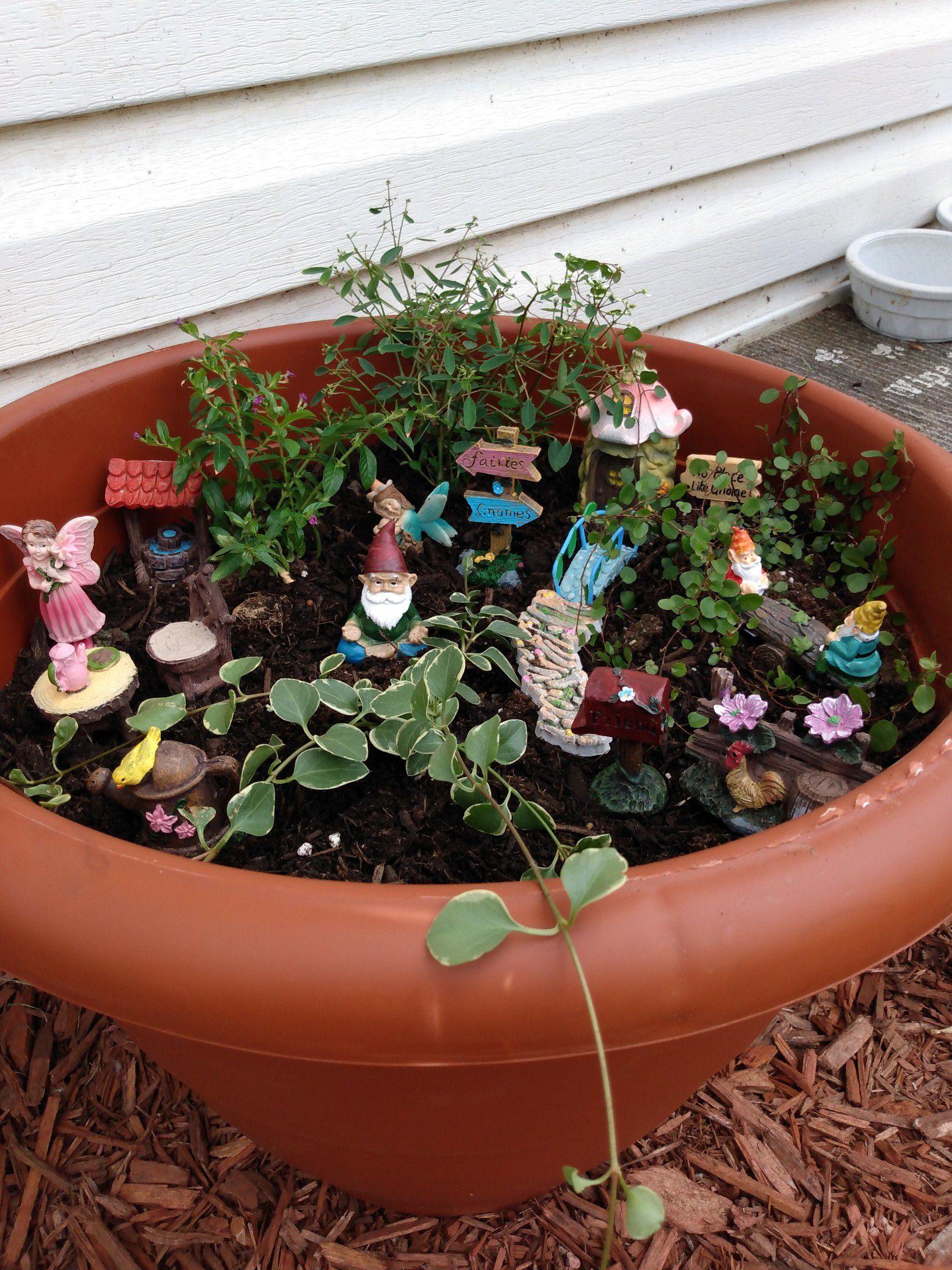 Fairy/Gnome made to order gardens.