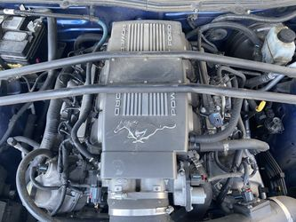 2009 Ford Mustang Thumbnail