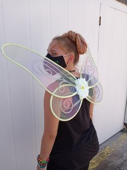 Tinkerbell wings Thumbnail