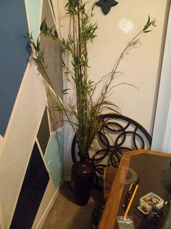 Fake Plants Thumbnail