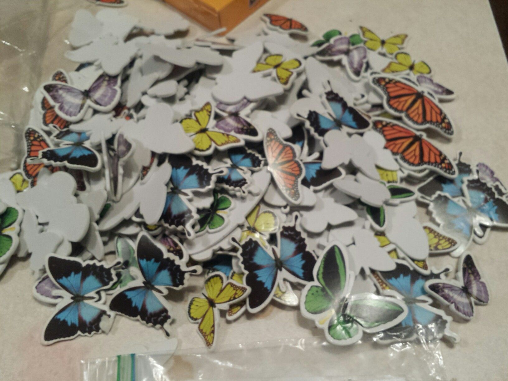 Butterfly, butterflies & more butterflies