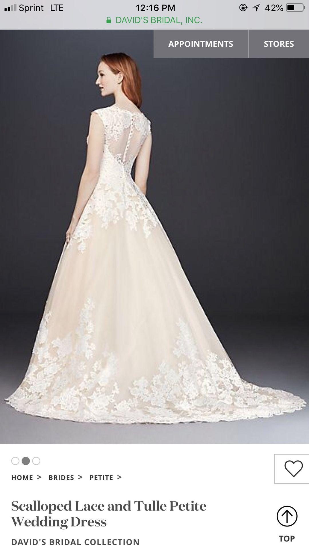 Wedding Dress 2P