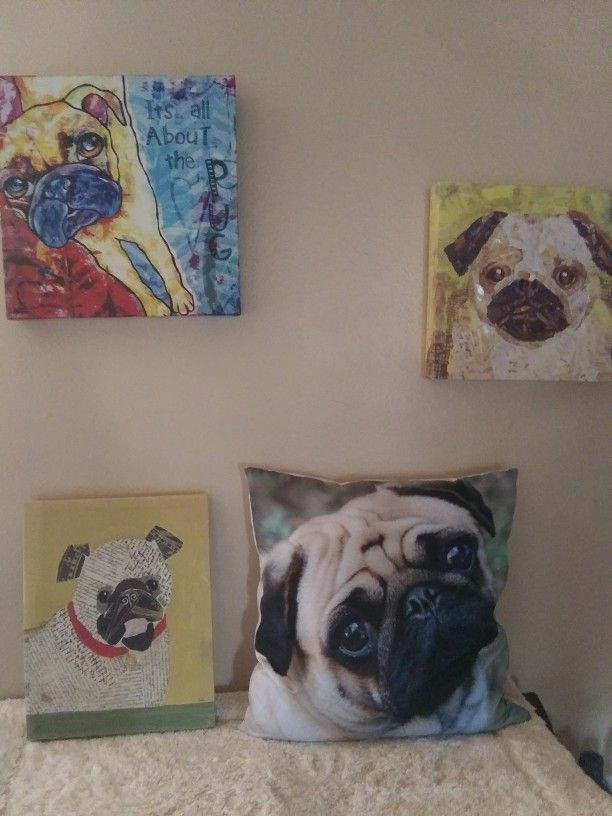 Pug Pictures & Pillow