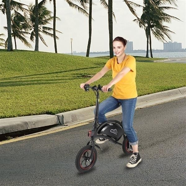 Folding Electric Bike, with 250W Motor and 6 Ah Lithium Battery