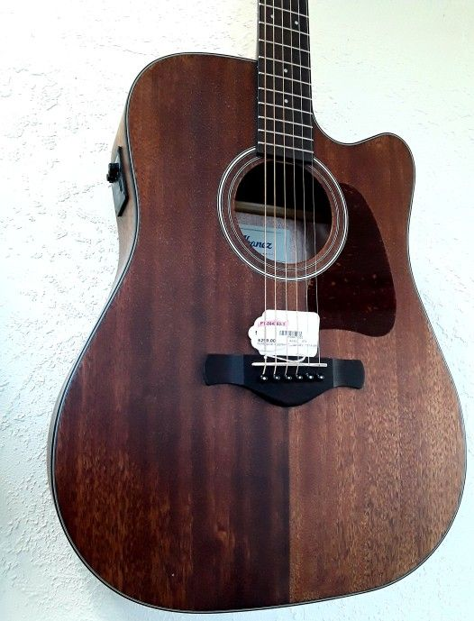 Ibanez Acoustic Electric Guitar w/gig bag!