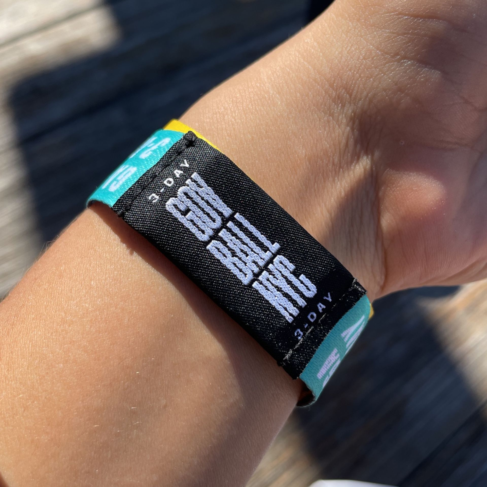 Today And Tomorrow Pass To Gov Ball
