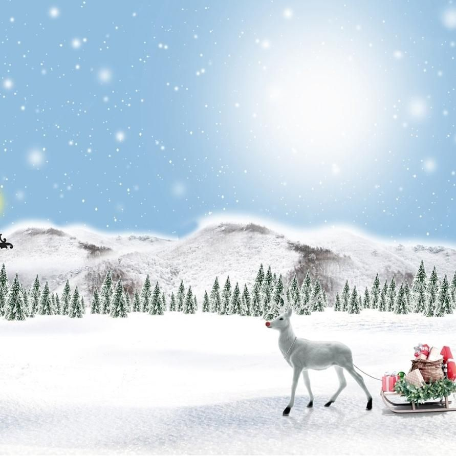 7x5ft Winter Photography Background Christmas Backdrops Snow Photo Booth Props