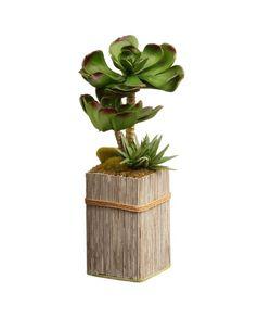 "Artificial 11"" Garden Accents Succulent Plant Bamboo Style Pot Thumbnail"