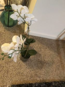 Two Flowers Decoration Thumbnail
