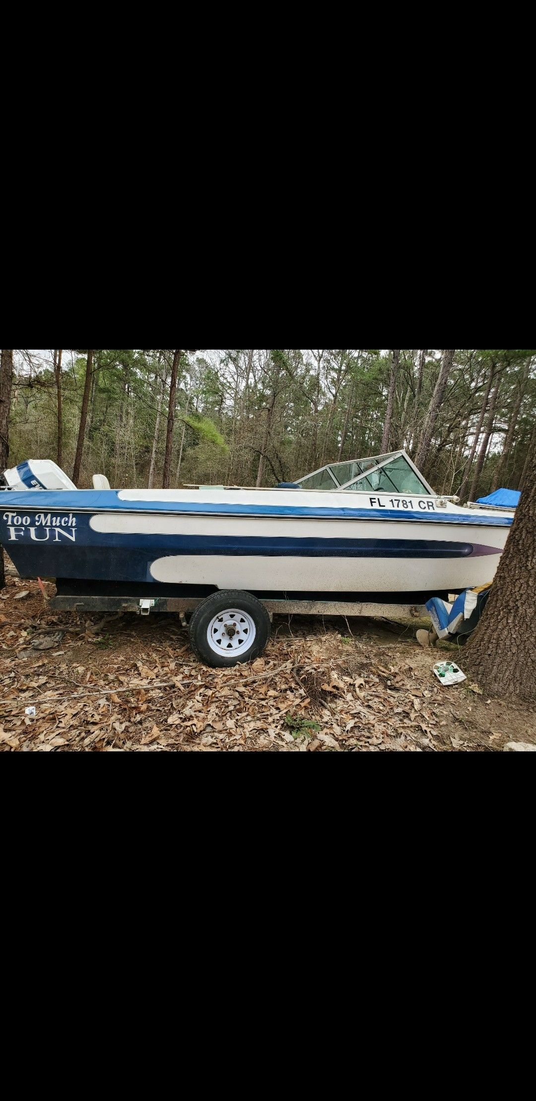 Evinrude motor and boat