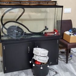 65 Gallon Fish Tank with Stand Thumbnail